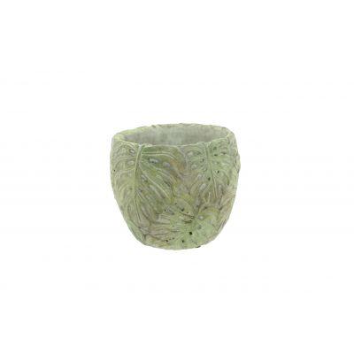 Zement-Topf 13 x 13 x 11,5 cm Monstera 103885