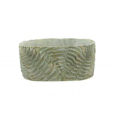 Zement-Schale 24,5 x 13,5 x 11,5 cm Farn 103898