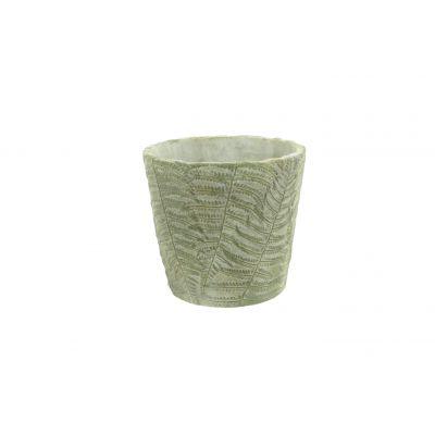 Zement-Schale 14 x 14 x 13,5 cm Farn 103900