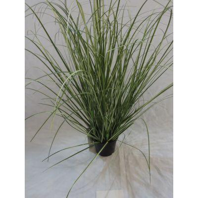 Onion Gras Tisch-Deko getopft 61 cm small 110264