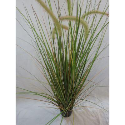 Onion  Gras Halme 88 cm 110270