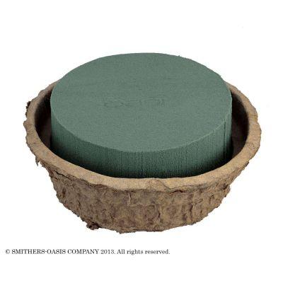 Oasis Biolit Schale (4) 6x D 14cm 013503