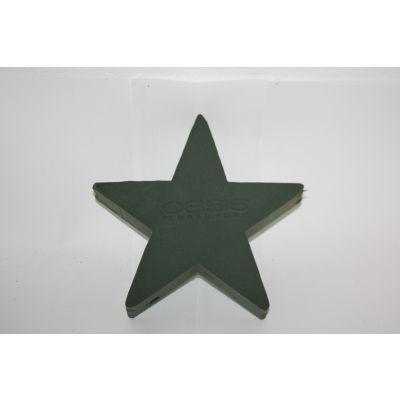 Oasis Stern (2) 25 cm 091521